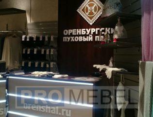 pm-2-vr-orenburskiy-puhovy-platok-01 (4)
